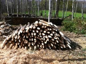 Piquets de bois